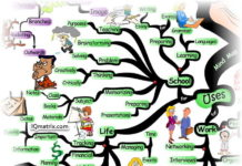 10 Best Mind Mapping Software